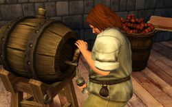 Les Sims Medieval (7)