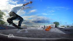 Skate   05