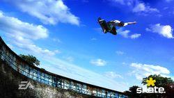 Skate   13