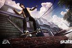 Skate - Image 10