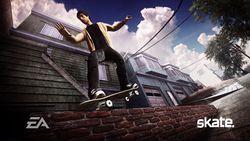 Skate image 10