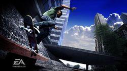 Skate image 13