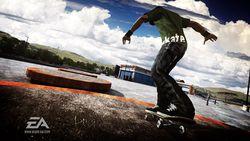 Skate image 14