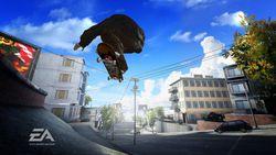 Skate image 16