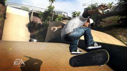 Skate image 20