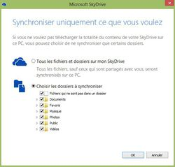 SkyDrive-Synchronisation-choix-dossiers