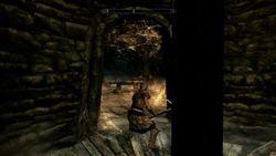Skyrim (2)