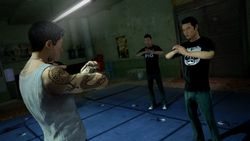 Sleeping Dogs - 9