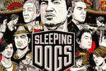 Sleeping Dogs - vignette