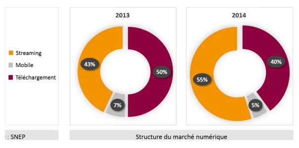 Snep-marche-numerique-2014