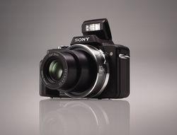 Sony dsc h3 b flash