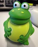 Sophos freddi frog