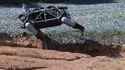 Spot chien robot armée US 2