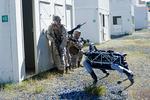 Spot chien robot armée US