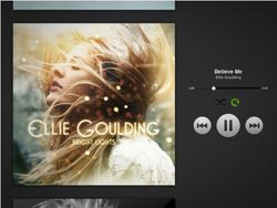Spotify iPad 02