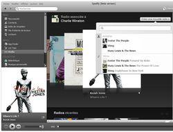 Spotify-Radio
