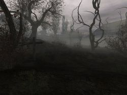 STALKER : Shadow of Chernobyl - Image 4