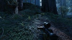 Star Wars Battlefront - Endor - 2