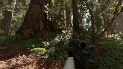 Star Wars Battlefront - Endor - 4