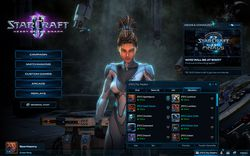 StarCraft II : Heart of the Swarm - clans 1