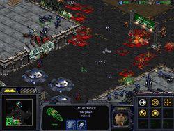 Starcraft   Image 3