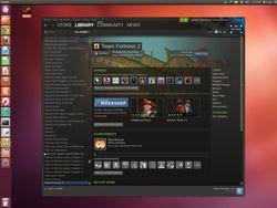 Steam Linux - interface