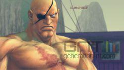 Street Fighter 4 (41)
