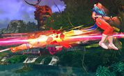 Street Fighter IV 11