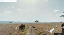 Street-View-Samburu