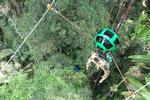 Street View : la canopée amazonienne en tyrolienne