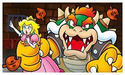Super Mario 3D Land (13)
