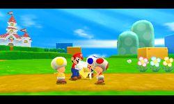 Super Mario 3D Land (15)
