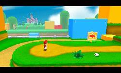 Super Mario 3D Land (31)