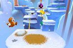 Super Mario 3DS (11)