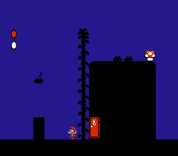 Super Mario Bros. 2   Image 3