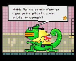 Super Paper Mario (11)