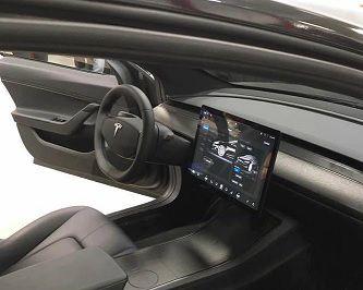 Tesla vignette