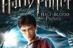 Test Harry Potter prinde sang melé