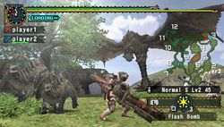 test monster hunter freedom 2 psp image (21)