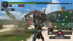 test monster hunter freedom 2 psp image (24)