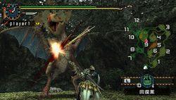 test monster hunter freedom 2 psp image (7)