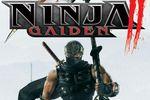 Test Ninja Gaiden 2