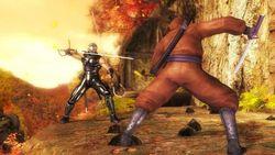 Test Ninja Gaiden Sigma PS3 image (10)