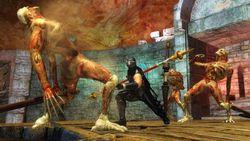 Test Ninja Gaiden Sigma PS3 image (13)