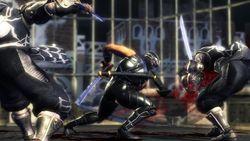 Test Ninja Gaiden Sigma PS3 image (17)