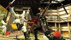 Test Ninja Gaiden Sigma PS3 image (1)
