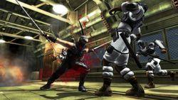 Test Ninja Gaiden Sigma PS3 image (2)