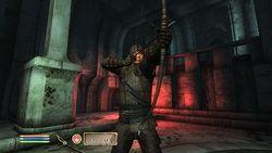 Test Oblivion Elder scrolls IV Oblivion image (14)