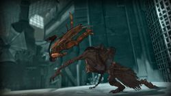 test prince of persia xbox 360 image (8)