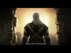 test the witcher pc image (3)